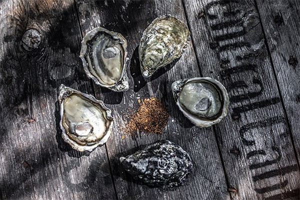 Oysters w. Avocado & Red Wine Vinegar